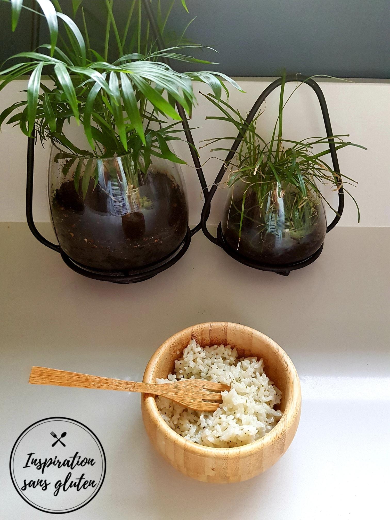 Riz lait de coco
